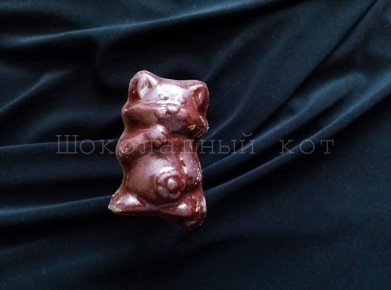 """Шоколад ручной работы """"Котики"""""""